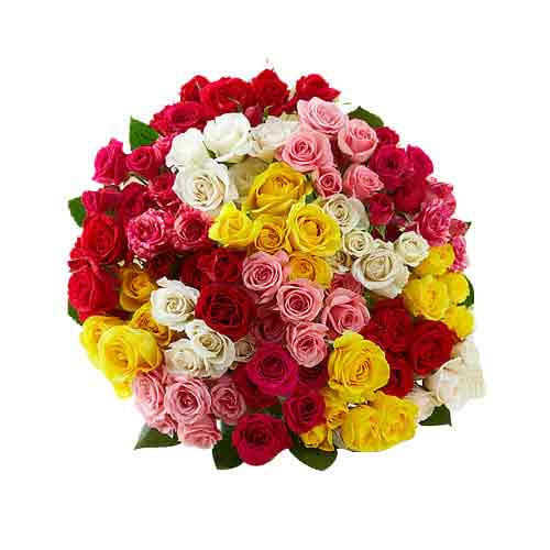 Rainbow - Ecuadorian 99 Stems assorted Roses