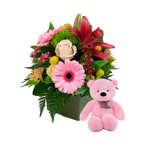 Special Box of Mixed Flowers and a Teddy Plush