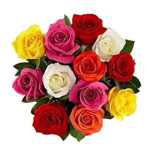 Modern Bouquet of One Dozen Mix Roses
