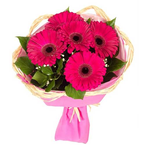 Attention-Getting 5 Gerberas Bouquet