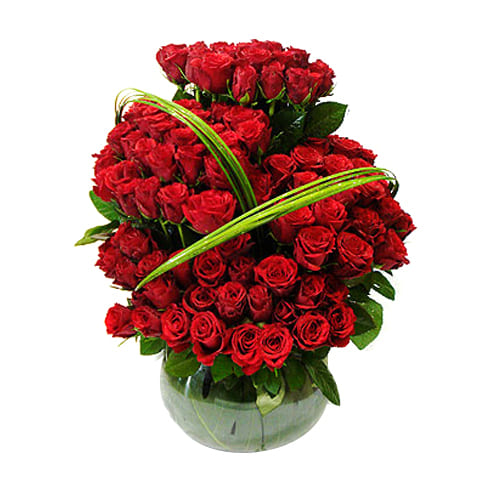 Pure Expressive Love 100 Stalks of Long Stemmed Red Roses