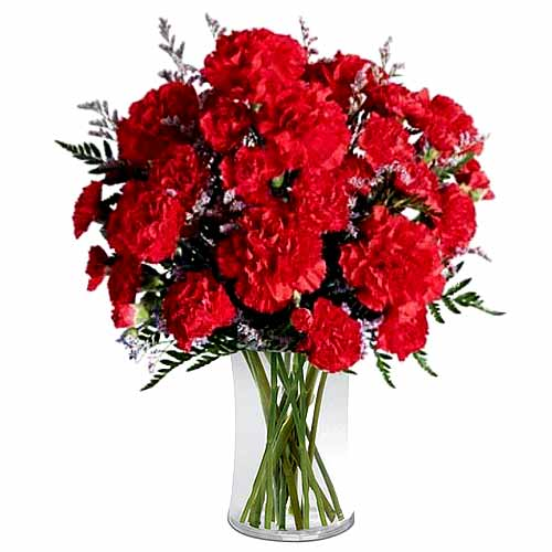 Eye-Catching and Lasting Memories Rich Red Carnation Bouquet