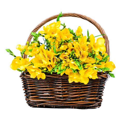Attention-Getting Sweet Memories with Love Freesia Basket