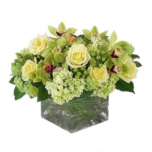 Silky-Smooth Yellow and Green Floral Arrangement with Best Wishes