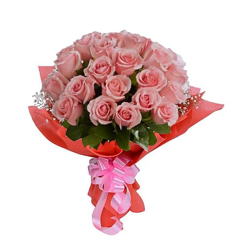 Magnificent True Modesty 24 Pink Roses