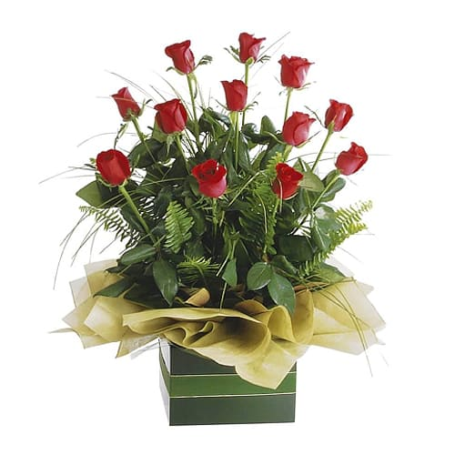 One Dozen Roses in Gift Box