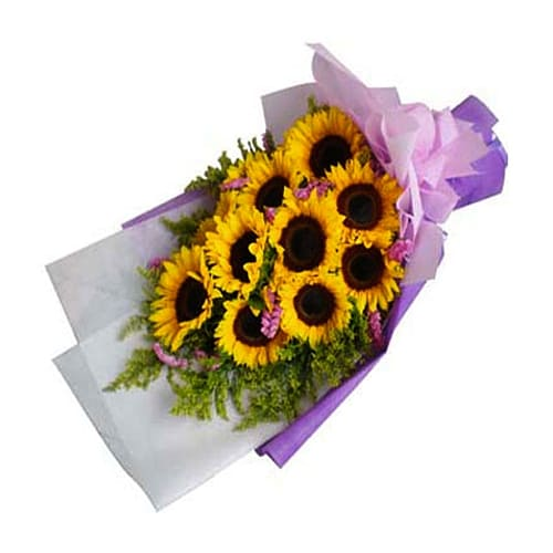 Fresh and Vibrant Yellow Sunflower