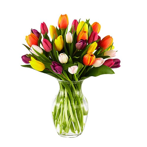 Romantic Celebrate the Moments Mixed Tulips Bouquet