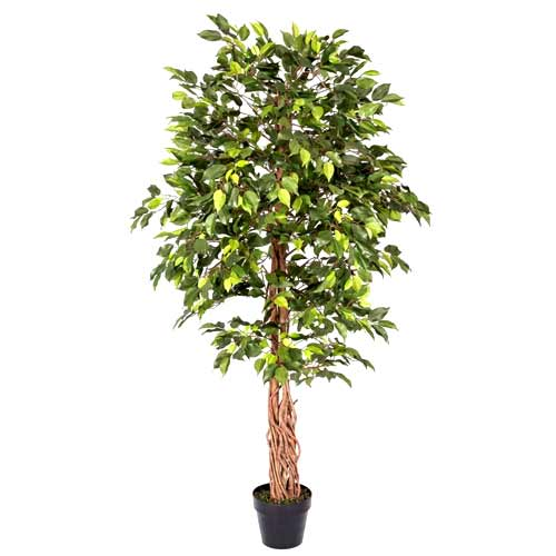 Long-lasting and Exotic Artificial Tree