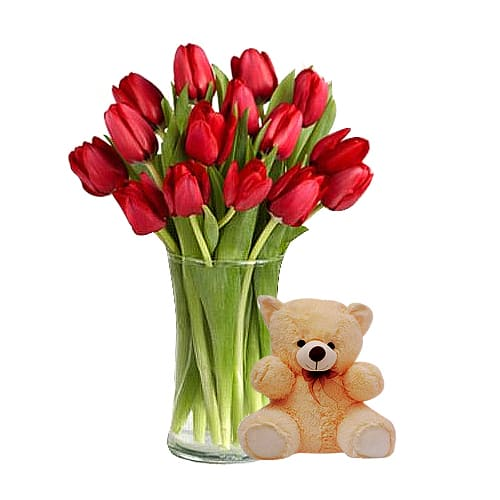 Red Tulip Bouquet with Teddy Bear